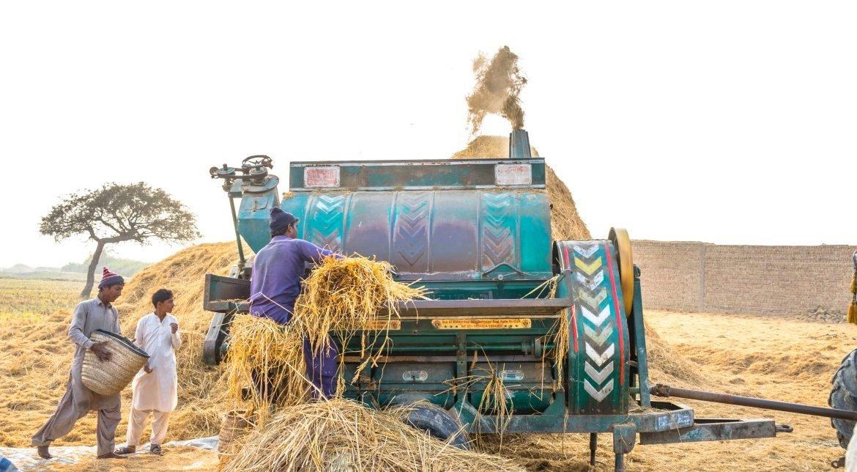 Pakistan is Under Wheat Flour Crisis-Bread Markets on Strike