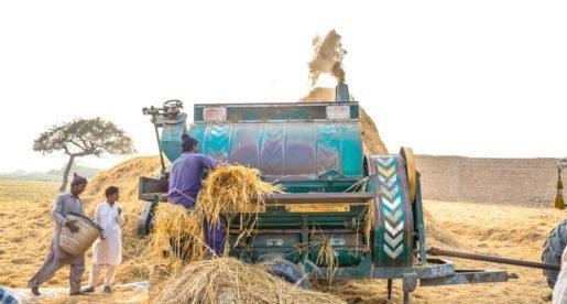 Pakistan is under wheat flour crisis