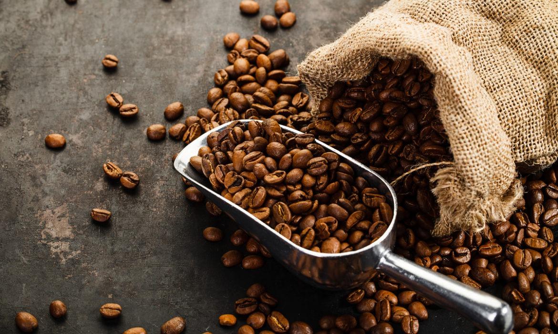 Arabica Coffee closed at a 1-Week High