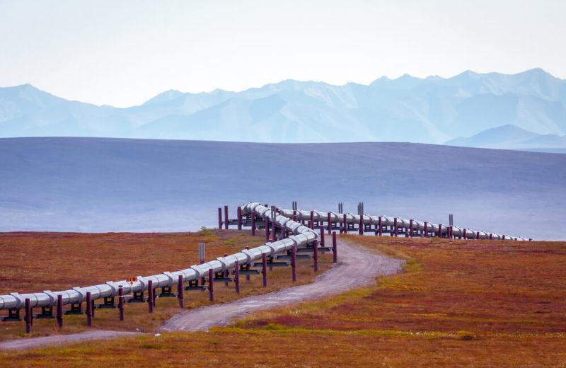 crude pipeline in a field